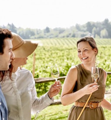KAVA tours guided vineyards experience package